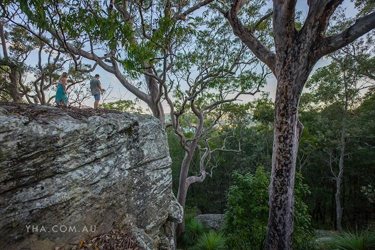 Bushwalks Surrounding Pittwater YHA